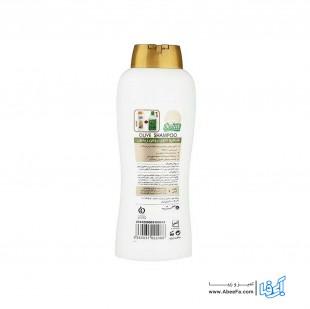شامپو صحت مدل Olive حجم 1 لیتر