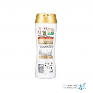 شامپو موی صحت مدل Almond مقدار 300 گرم
