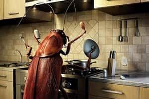 ابزار دفع حشرات و جانوران موذی
