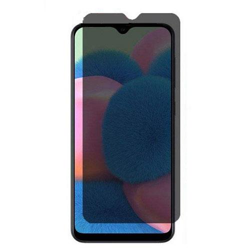 Samsung Galaxy A20s Privacy Mocoll Glass
