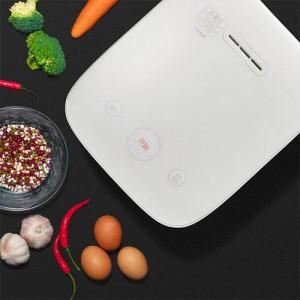 Xiaomi Mijia 2 Rice Cooker