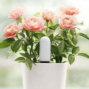 Xiaomi Mi Smart Plant Monitor Sensor