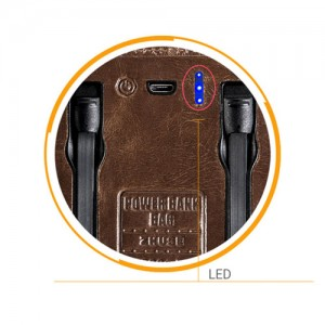 ZHUSE ZS-PB-018 4000mAh Power Bank And Leather Bag