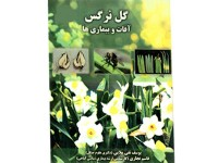 کد 3015- گل نرگس (آفات و بيماري ها)