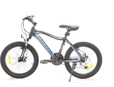 دوچرخه  فونیکس SKY سایز 20 کد 201003 تنه آلومینیومی و دیسکی PHOENIX SKY- ZK100