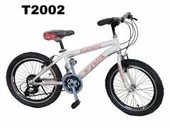 دوچرخه ایرانی دنده ای سایز 20 کد T2002 گارانتی یکساله