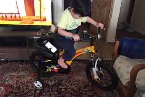 مهراد امین زاده و دوچرخه قناری اش  ۳.۵سال از تهران