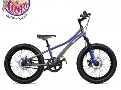 دوچرخه قناری اکسپلورر سایز 20 مدل Explorer 20″ 2020