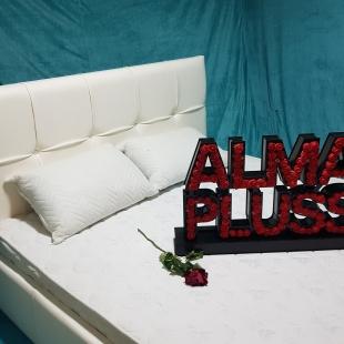 تخت خواب دونفره مدل اونتوس سایز 160×200 سانتی متر