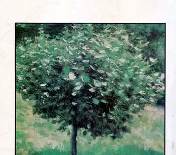 کتاب وقتیکه درختها سبز بودند