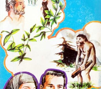 کتاب تکامل یا خلقت