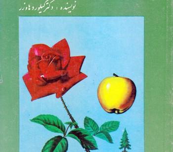 کتاب رمز شادی و تندرستی