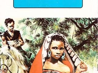 کتاب پیر زن جادوگر