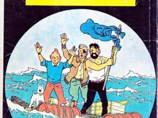 کتاب کوسه های دریای سرخ