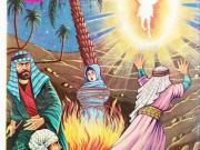 کتاب اذا جاء نصر الله و الفتح