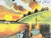 کتاب قورباغه دوراندیش