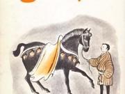 کتاب اسب عالی