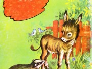 کتاب خطر در جنگل