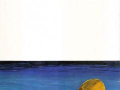 کتاب اسرار گنج دره جنی