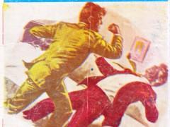 کتاب دشمن جنایتکاران
