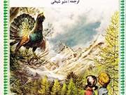 کتاب جانی و سوفی در کوهستان