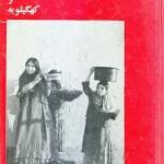 کتاب فرهنگ عامیانه عشایر بویر احمدی و کهگیلویه