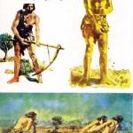 کتاب سیر تکامل فرهنگ