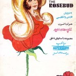 کتاب غنچه گل سرخ ، زیبای خفته