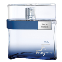 ادوتویلت مردانه Salvatore Farragamo F by Ferragamo Free Time 100ml