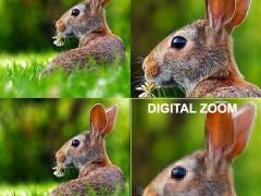 تفاوت زوم اپتیکال با زوم دیجیتال
