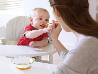 ظرف غذای نوزاد