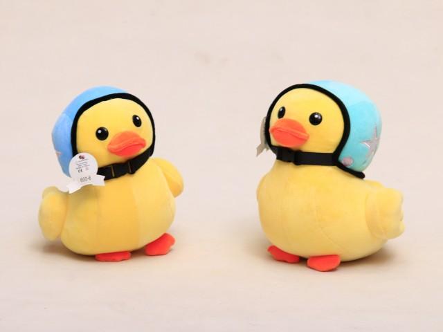 اردک خلبان