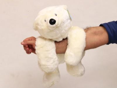 خرس قطبی تنبل آویزونی