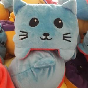 گربه مودی