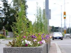گلدان های بتونی شهری