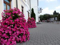 گلدان شهری فلاور باکس