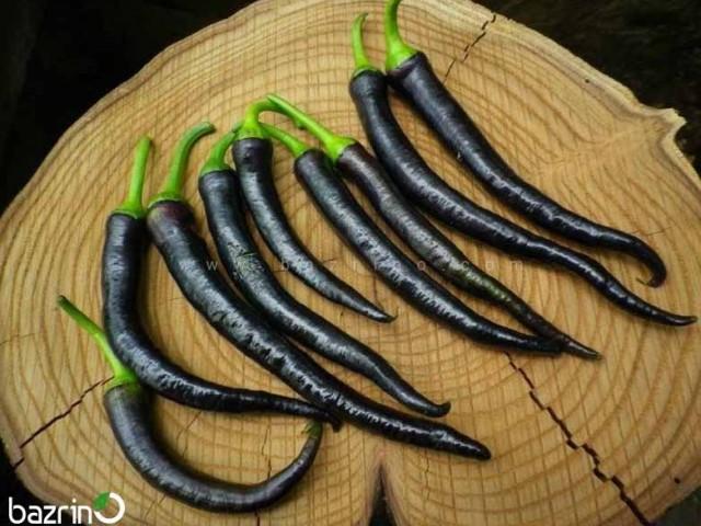 بذر فلفل قلمی تند سیاه