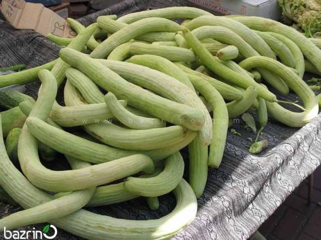 بذر خیار چنبر