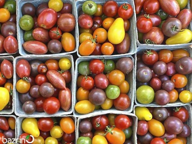 بذر گوجه چری میکس