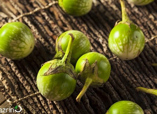 بذر بیبی بادمجان سبز