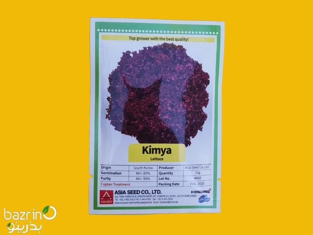 بذر کاهو فر بنفش 2020 Kimya Lettuce