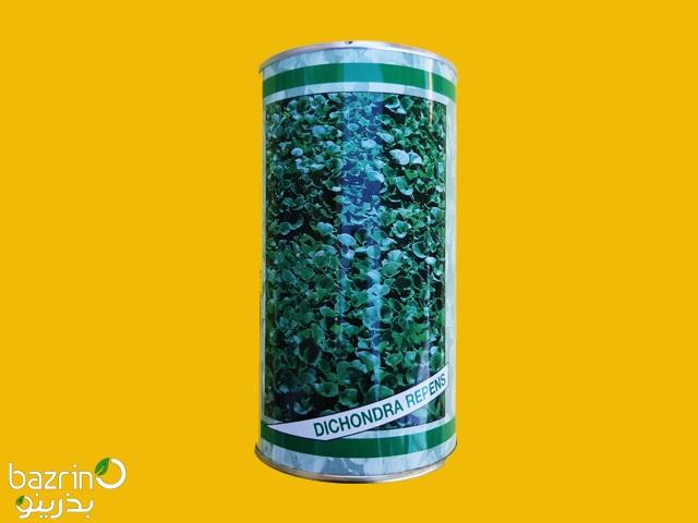 بذر چمن دایکوندرا ایتالیایی (۱۰۰ گرمی)