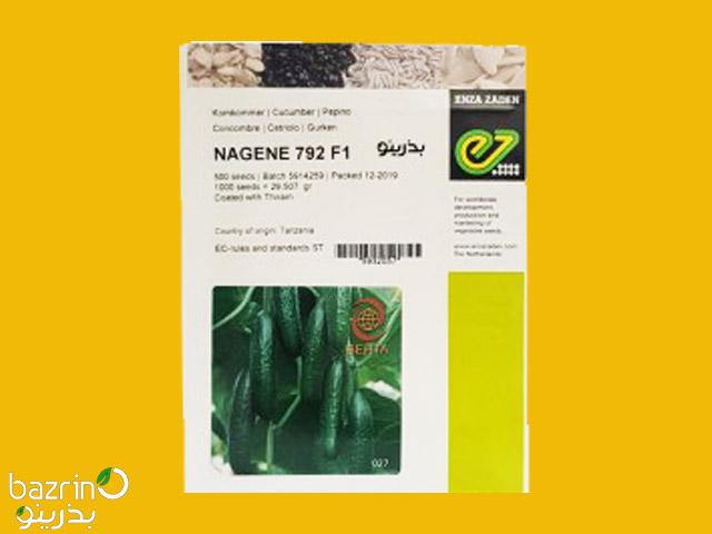 بذر خیار سبز هیبرید ناگین NAGENE 792 F1 2020