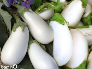 بذر بادمجان سفید دلمه ای