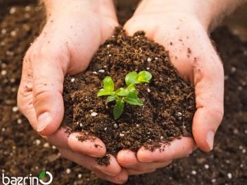 خاک مخصوص کشت بذرینو