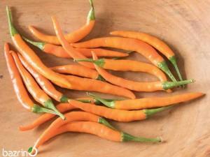بذر فلفل قلمی تند نارنجی