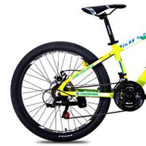دوچرخه کوهستان INTENSE کد 2400803