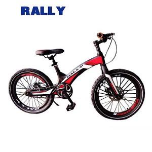 دوچرخه کوهستان RALLY کد 204211