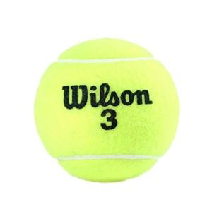 توپ تنیس ویلسون مدل Championship بسته 1 عددی