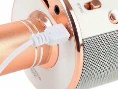میکروفن اسپیکر چندکاره